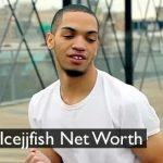 Icejjfish Net Worth