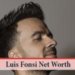 Luis Fonsi Net Worth