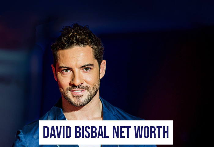 David Bisbal Net Worth