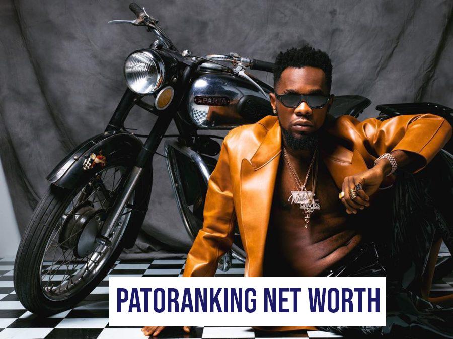 Patoranking Net Worth