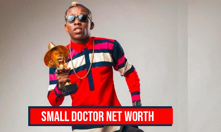 Small Doctor Net Worth