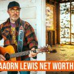 Aaron Lewis Net Worth