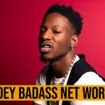 Joey Badass Net Worth