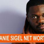 Beanie Sigel Net Worth