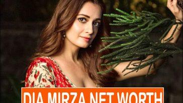 Dia Mirza Net Worth