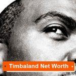 Timbaland Net Worth